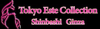 Escort Ginza Shinbashi Delivery Health Tokyo | Tokyo Este Collection Shinbashi・Ginza ロゴ